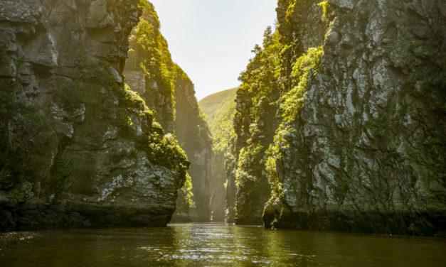 Les différentes activités à découvrir lors d'un camping en Afrique du Sud